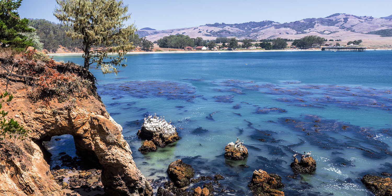 DISCOVER THE BEAUTY OF SAN SIMEON, CA AT OUR AFFORDABLE MOTEL
