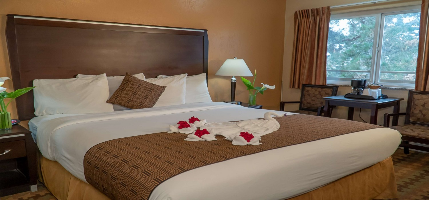 SLEEP WELL IN OUR COMFORTABLE SAN SIMEON, CA GUEST ROOMS